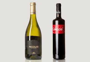 Cata de vino en Bodegas Nodus