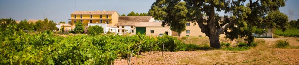 Viñedos y Finca agrícola El Renegado
