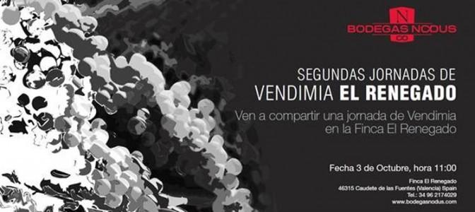 Segundas Jornadas de Vendimia en la Finca El Renegado