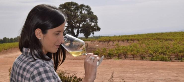 Vino blanco Nodus Chardonnay Selección