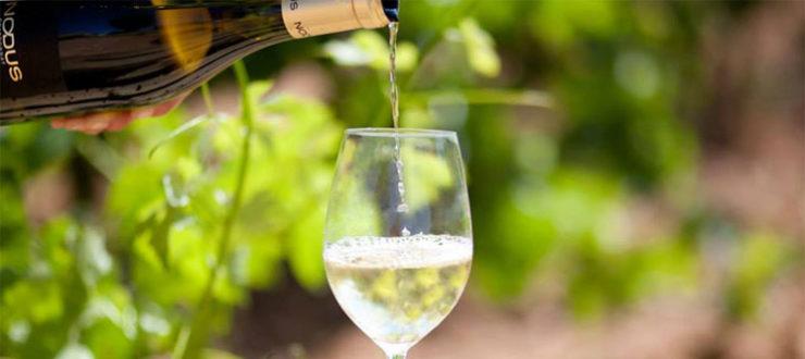 Vino blanco para el verano